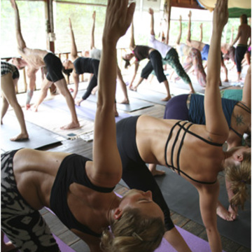 The Yoga Retreat, KohPhangan