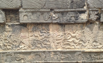 7 Day Ayahuasca Retreat in the Mayan Yucatan