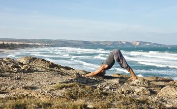 200 Hour Hawaii Yoga Teacher Training