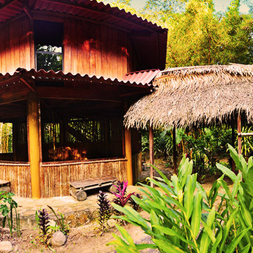 14 Days Ayahuasca & Yoga Retreat in the Amazon, Peru - December 2017