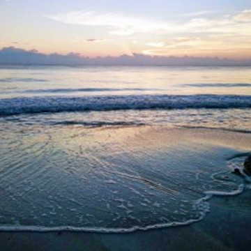 Live Life on Purpose: Law of Attraction Tulum Yoga Retreat
