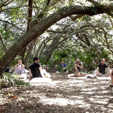 3 day 2 Night Ayahuasca vine only detox retreat-May 12 – 14