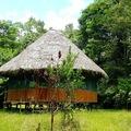 The Sanctuary of Renana