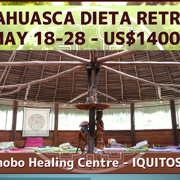 Ayahuasca Plant Dieta Retreat
