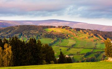 Ayahuasca retreat Chech - Prague Countryside (6 Aug 2017)