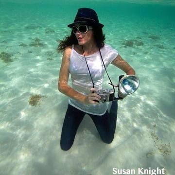 Susan Knight ~ Underwater Photographer