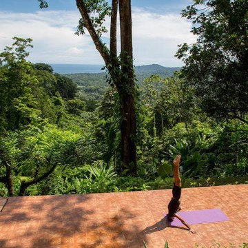 Reiki and Yoga Rainforest Retreat