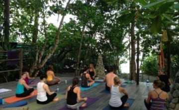 Ame Wren Yoga Retreat