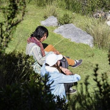 6 Day Ayahuasca Retreat July 27-01