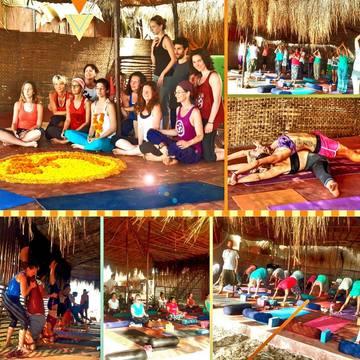 Lotus Oasis Yoga