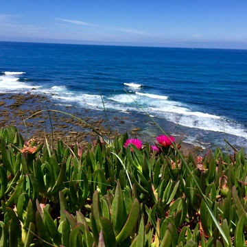 Jikiden Reiki Teaching and Yoga Retreat / Ericeira / Portugal