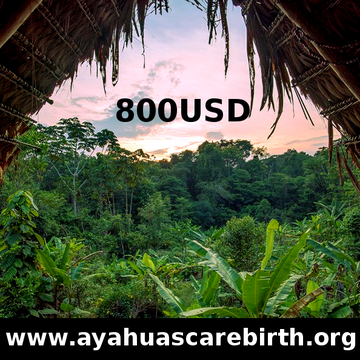 10 Days SPECIAL Ayahuasca Rebirth Retreat (24th August - 2nd September)