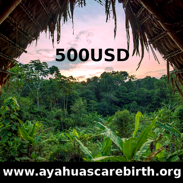 6 Days Ayahuasca Rebirth Retreat (17th - 22nd July)