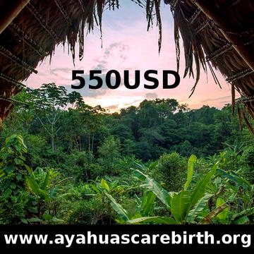 7 Days Ayahuasca Rebirth Retreat (24th - 30th August)