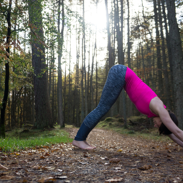 Into the Woods Yoga Retreat