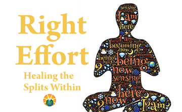 Healing the Splits Within: Right Effort (Webinar Series 3)
