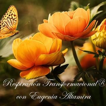 Transformational Breath® Level 4B – Florida (English)