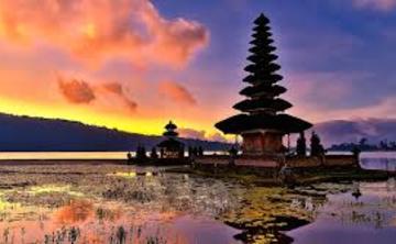 Bali Ayahuasca retreat (Oct 2017)