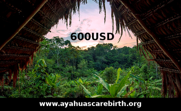 9 Days Ayahuasca Rebirth Retreat (21st August - 29th August)