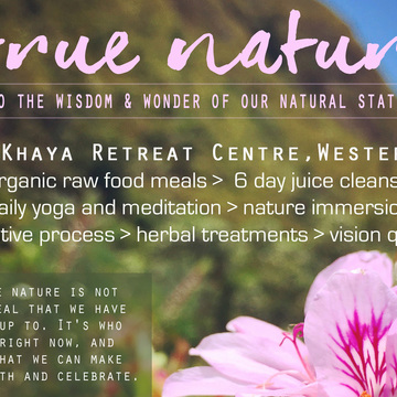 THE WHOLE TRUTH RETREAT: True Nature