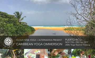 Tropical Ommersion: 16 Day Yoga Teacher Training