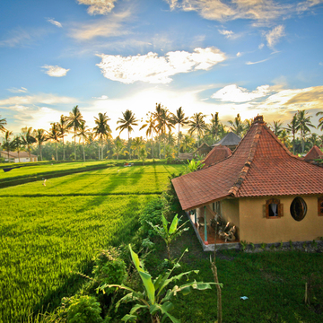 Detox Your Mind & Body Retreat, Ubud, Bali