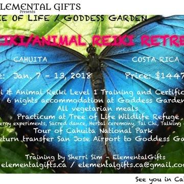Elemental Gifts/Tree of Life Animal Reiki Training & Retreat Costa Rica
