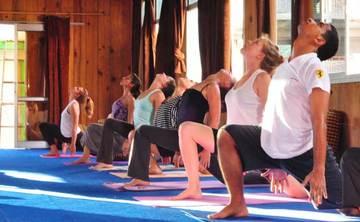 200 Hour Ashtanga Yoga Training in Rishikesh - india