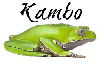 3 day 2 Night Kambô Cleanse Ceremony July 28-30