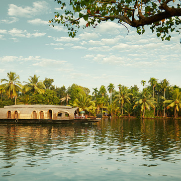 Yoga and Ayurveda in South India with Erin Fleming