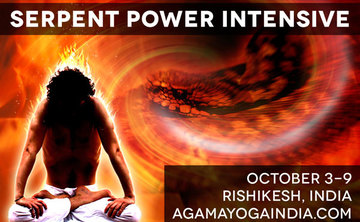 Serpent Power Intensive