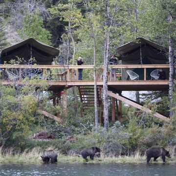 Bear Camp – 8 day Bear Viewing