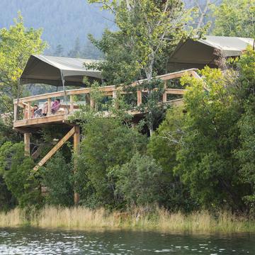 Bear Camp Combo