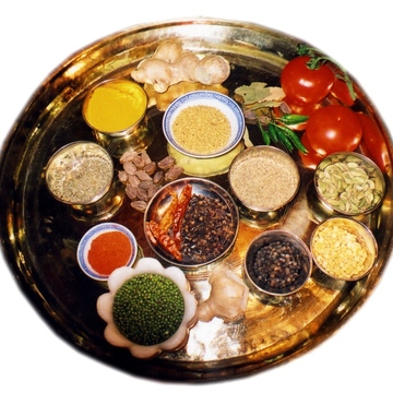 [en:]Ayurveda: the Science of Life[fr:]Ayurveda – la science de la vie[:]
