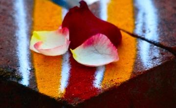 """[en:]All Saints Autumn Retreat: """"Vital Breath – Vital Energy""""[fr:]Retraite de la Toussaint « Souffle vital – Energie vitale »[:]"""