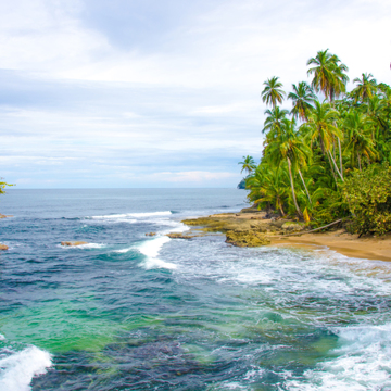 Costa Rica 200 Hour Yoga Teacher Training