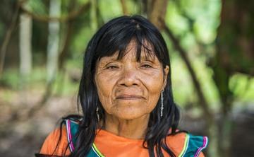 12 day NOYA RAO and Ayahuasca Silent retreat
