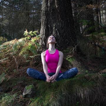 Into the Woods Yoga Retreat – Cumbria