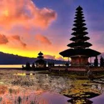 Bali Ayahuasca retreat (Sept 2017)